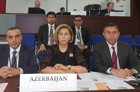 """Bahar Muradova və Tahir Mirkişilidən """"mühacir""""lərə sərt çavab"""