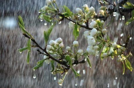 Külək əsəcək, yağış yağacaq-SABAH
