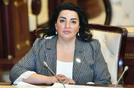 """""""Dağlıq Qarabağa heç bir status verilməyəcək…""""-MİLLƏT VƏKİLİ"""